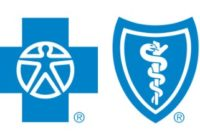 Blue Cross Blue Shield child only health insurance