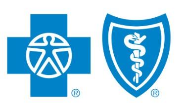 Blue Cross Blue Shield child only health insurance